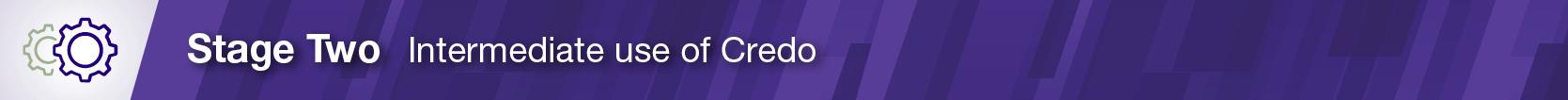 CredoInInstruction_SectionHead_801x51 Stage2_v2 (1)
