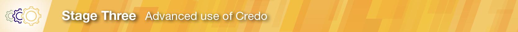 CredoInInstruction_SectionHead_801x51 Stage3_v2 (1)